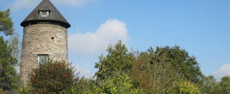 L'alignement de Cojoux - Sud vu de loin (Photo JCArquié)
